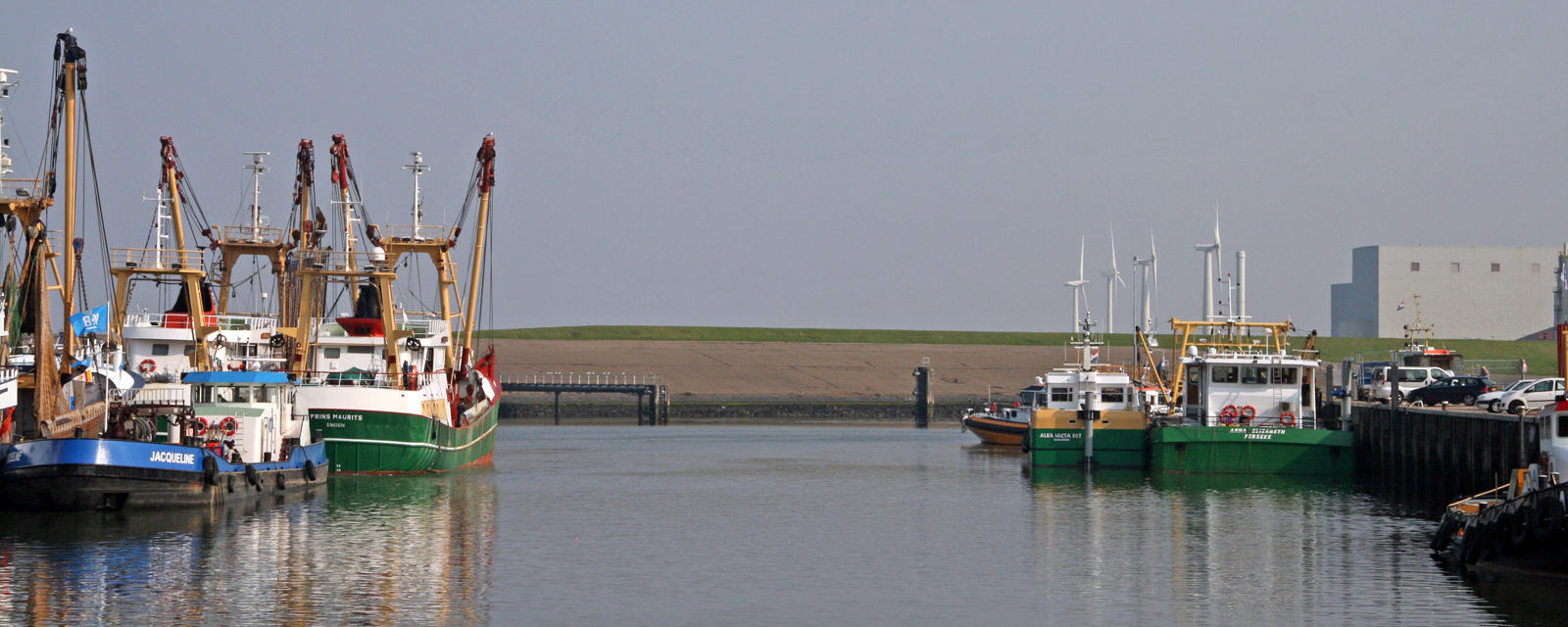 The Wadden Sea, sustainable fishing for cockles